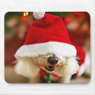 Bichon Frise puppy wearing Santa costume Mouse Mat