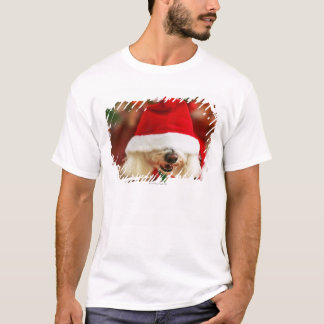 Bichon Frise puppy wearing Santa costume T-Shirt