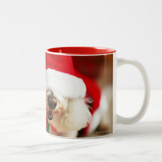 Bichon Frise puppy wearing Santa costume Two-Tone Coffee Mug