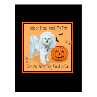 Bichon Frise Trick or Treat Post Card