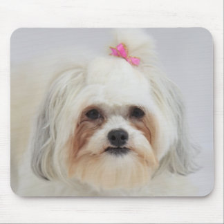 bichon frise with a pink bow in it's hair mouse mat