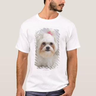 bichon frise with a pink bow in it's hair T-Shirt