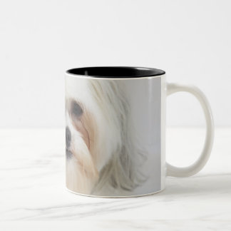 bichon frise with a pink bow in it's hair Two-Tone coffee mug