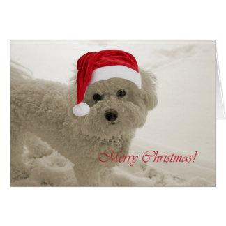 Bichon Merry Christmas Card