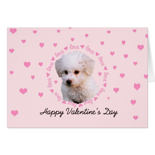 Bichon Valentine's Day Card