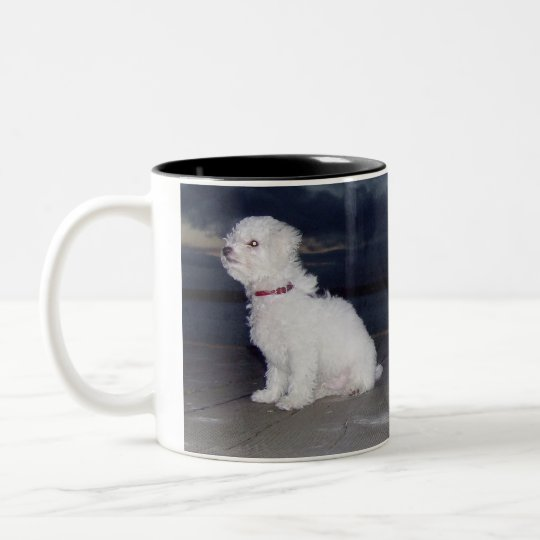 Bichons At Dusk Two-Tone Coffee Mug