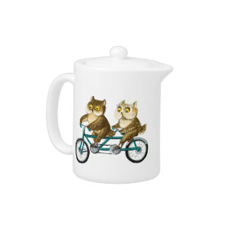 Bicycle owls