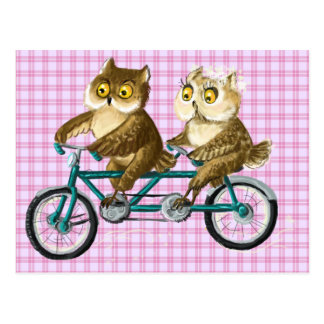 Bicycle owls post cards