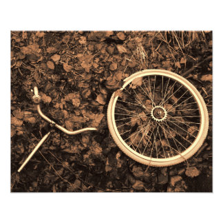 Bicycle parts with autumn leaves photo print