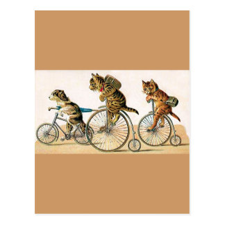 Bicycle Ride Postcard