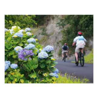 Bicycles and hydrangeas flyers