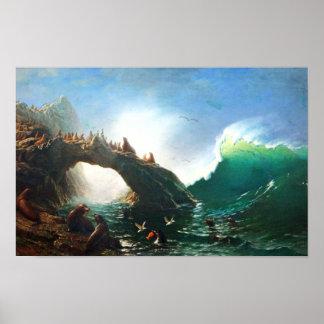 Bierstadt San Francisco Seals Poster