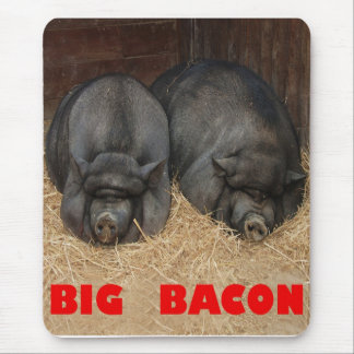 BIG BACON POT BELLIED PIGS MOUSE PAD