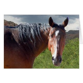 Big Bay American Quarter Horse - Blank Inside Greeting Card