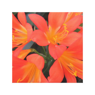 Big & Beautiful Tropical Flower Canvas Print
