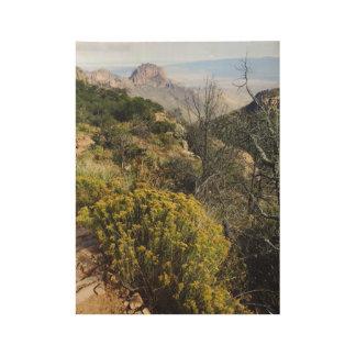 Big Bend National Park Wood Poster