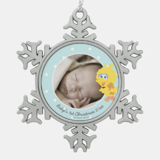 Big Bird   Baby's First Christmas - Add Your Name Pewter Snowflake Decoration