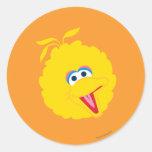 Big Bird Face Round Sticker