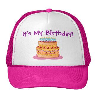 Big Birthday Cake Mesh Hats
