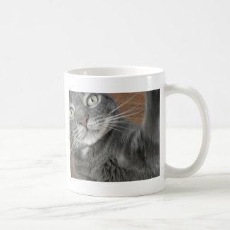 big blue cat mugs