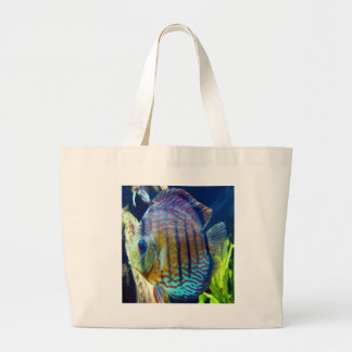 Big blue eyes, hanging out on a beach bag