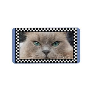 BIG-BLUE-EYES-KITTY-CAT Sticker