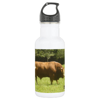 Big Boss - Limousin Bull 532 Ml Water Bottle