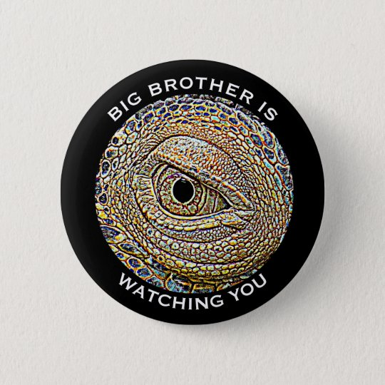 """Big Brother is Watching You"" & Lizard Eye"