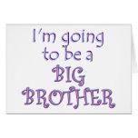 Big Brother/Sister Greeting Card