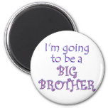 Big Brother/Sister Magnets