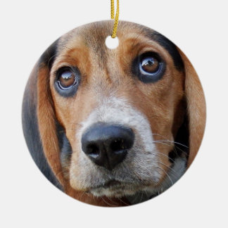 Big Brown Eyed Beagle Puppy Dog Christmas Ornament