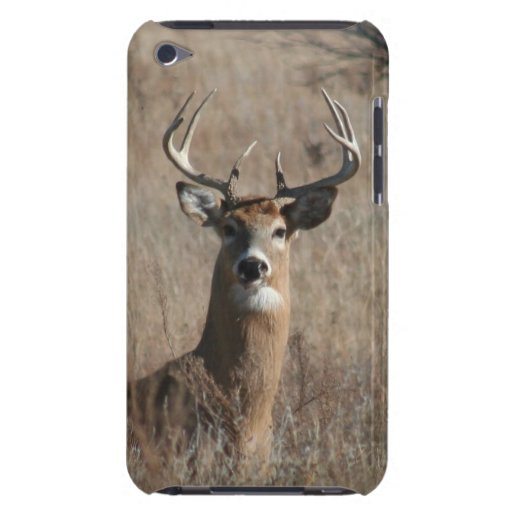 Big Buck Deer iPod Touch 4th Generation Case Barely There iPod Cover