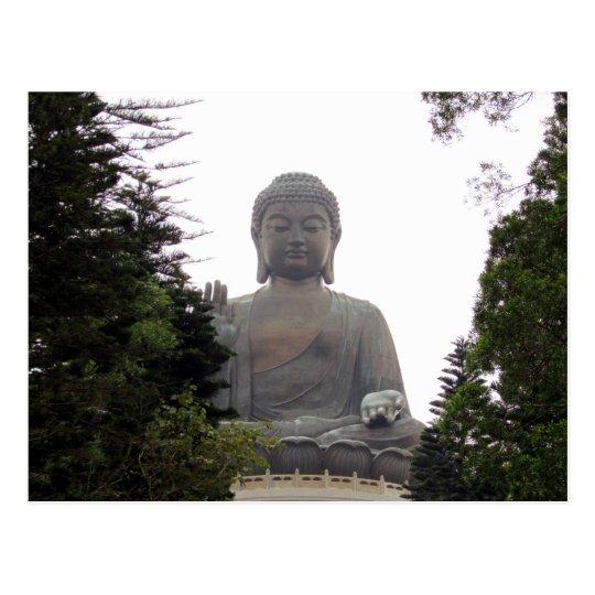 big buddha trees postcard
