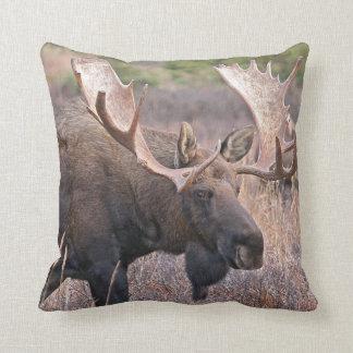 Big Bull Moose Cushion
