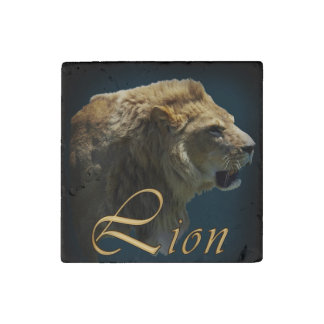 Big Cat African Growling Lion Wildlife Photo Art Stone Magnet