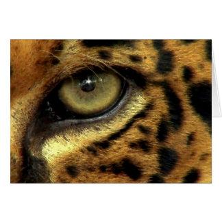 BIG CAT Endangered Species Series Cards