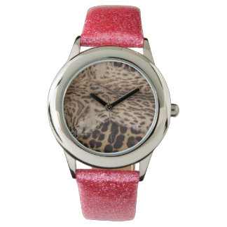 Big cat furr hides wristwatch