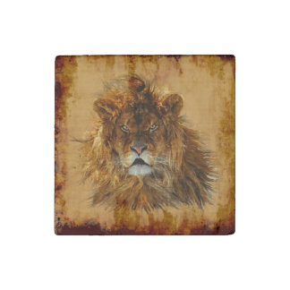 Big Cat Male African Lion Wildlife Photo Art 2 Stone Magnet