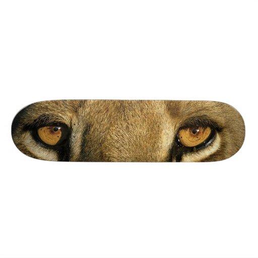 BIG CAT SKATEBOARD-7 King of the Jungle/LION
