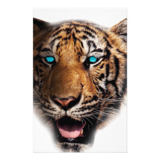 Big Cat Tiger Face Custom Stationery