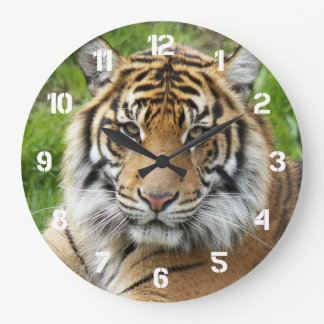 Big Cat Tiger Photo Large Clock