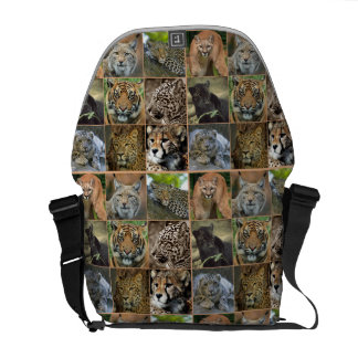 BIG CATS MESSENGER BAG