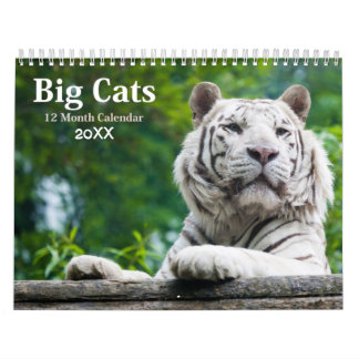 Big Cats Wildlife Calendar 2018