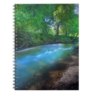 Big Chico Creek, Chico State University Spiral Notebook