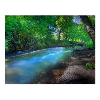 Big Chico Creek Postcard