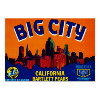 Big City Bartlett Pears Print