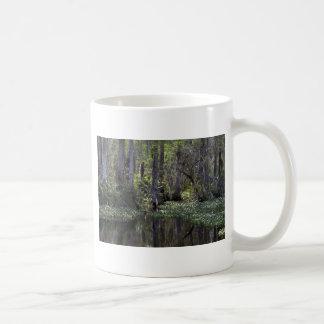 Big Cypress Preserve, Florida Coffee Mugs