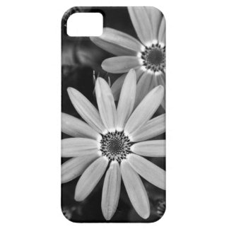 Big Daisy Iphone Case