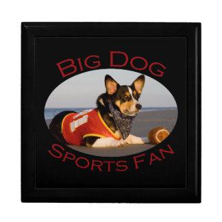 Big Dog, Sports Fan Jewelry Box