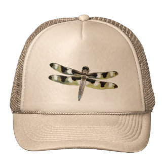 Big Dragonfly with Wings Out Cap